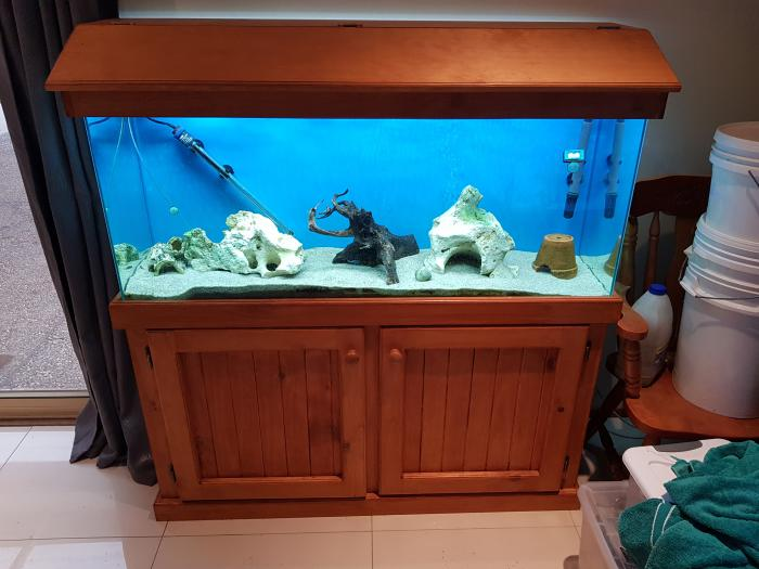 4ft fish tank complete excellent condition