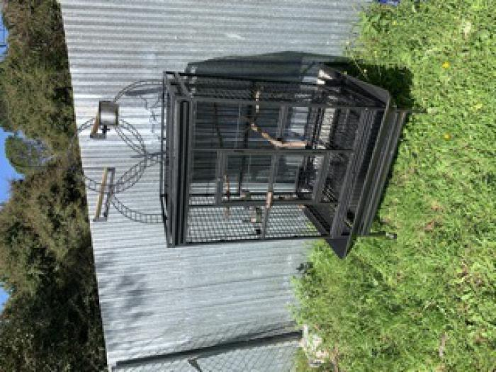 Bird cage with play gym