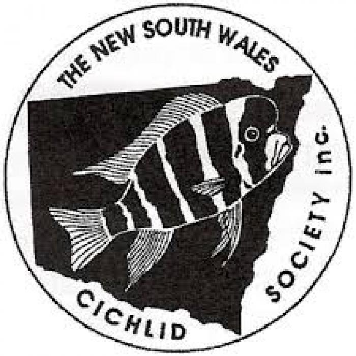 NSW Cichlid Society April 2021 MEETING & AUCTION